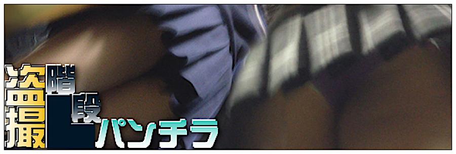 おまんこ:追い撮り!!階段パンチラ:丸見えまんこ