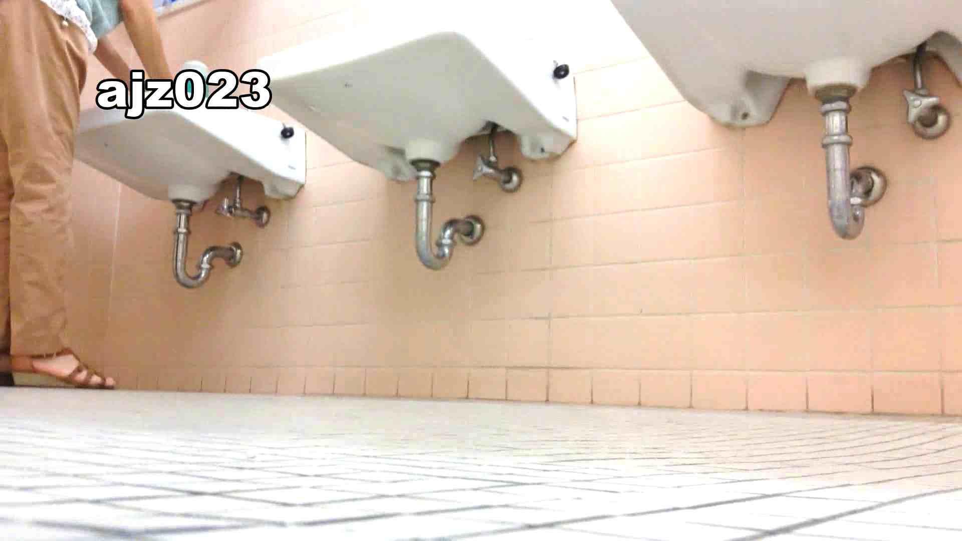 某有名大学女性洗面所 vol.23 洗面所 | HなOL  98pic 27