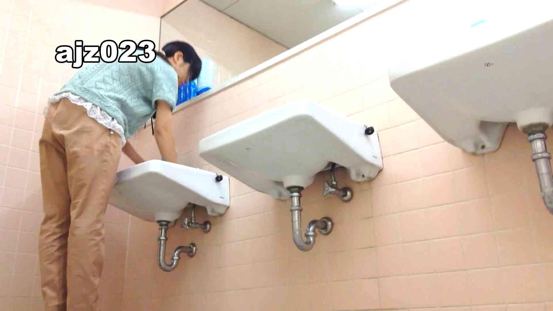 某有名大学女性洗面所 vol.23 洗面所 | HなOL  98pic 28