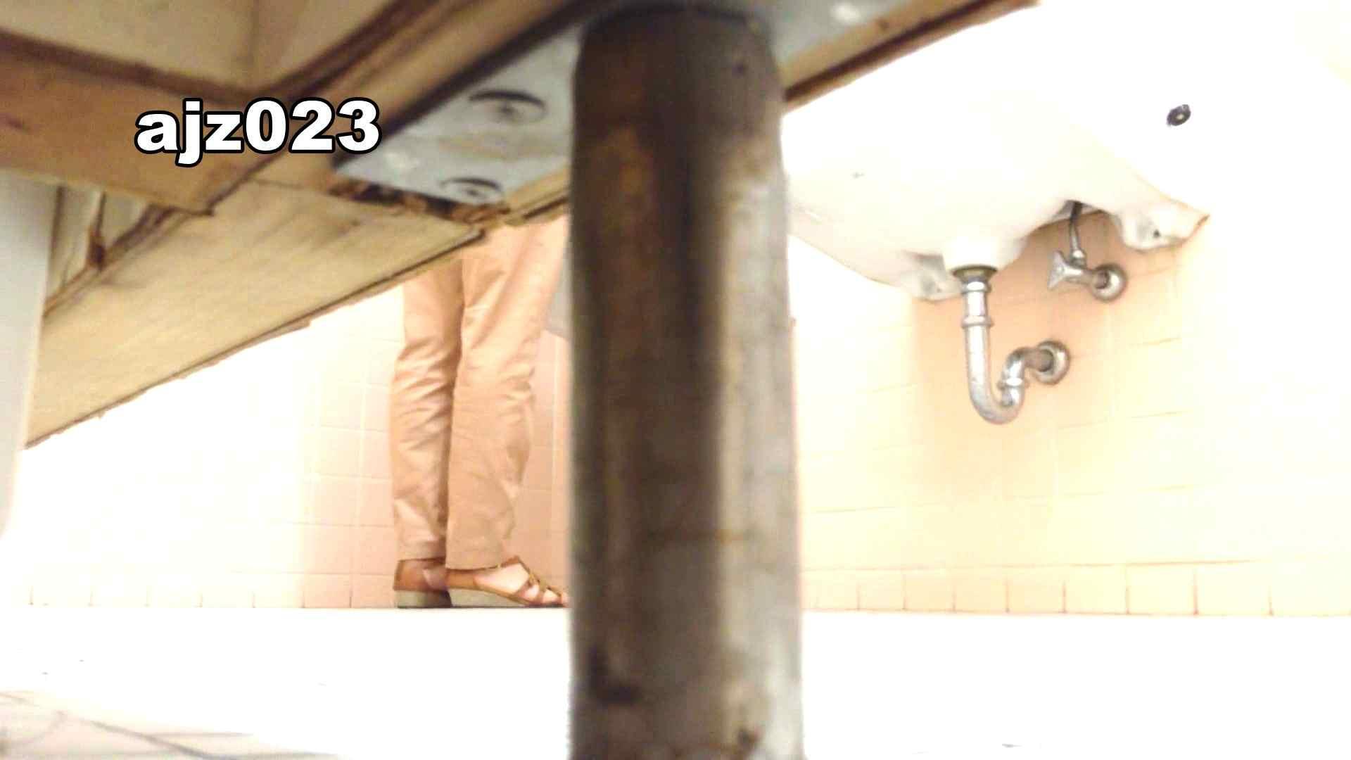 某有名大学女性洗面所 vol.23 洗面所 | HなOL  98pic 29