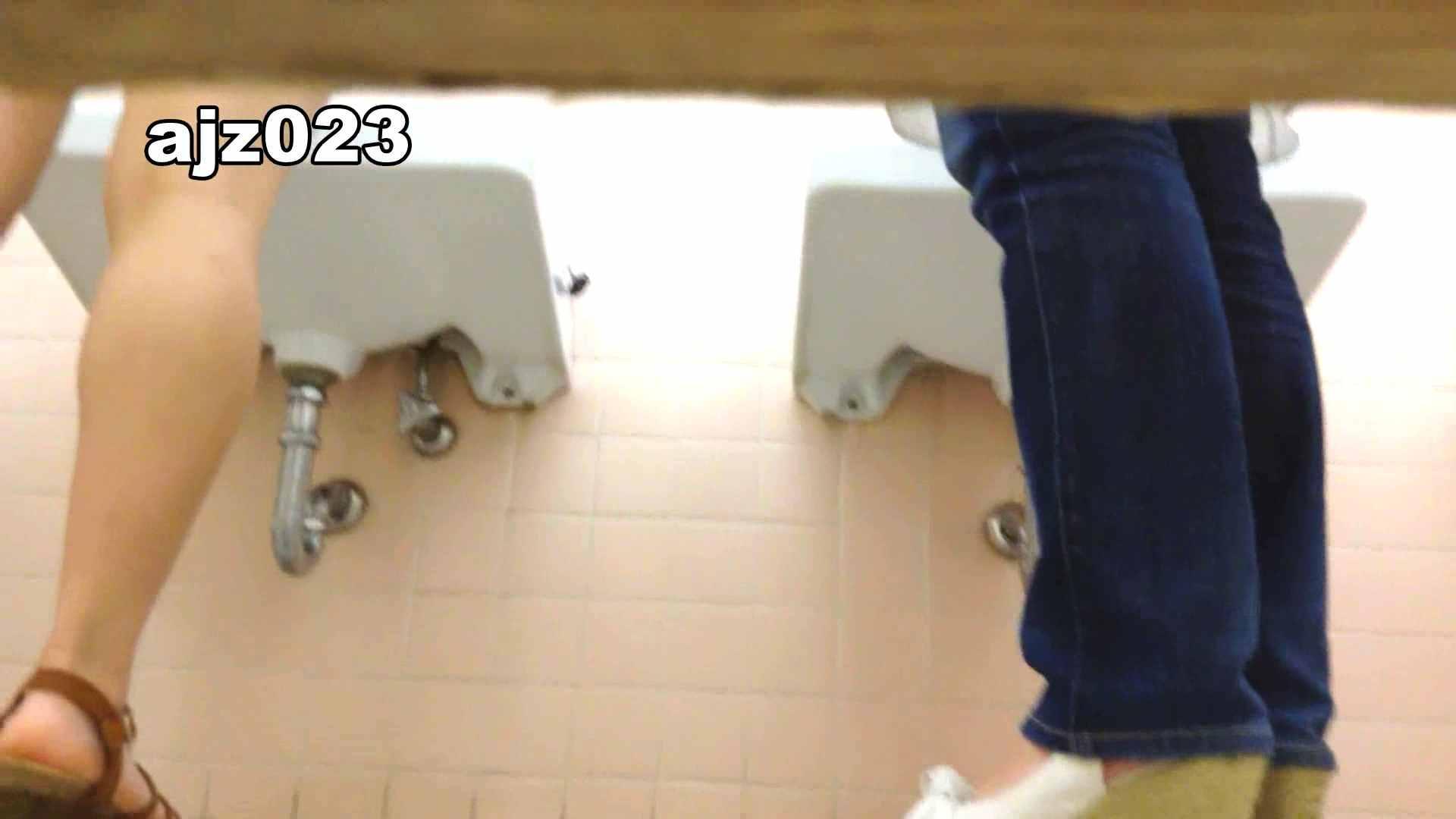 某有名大学女性洗面所 vol.23 洗面所 | HなOL  98pic 46
