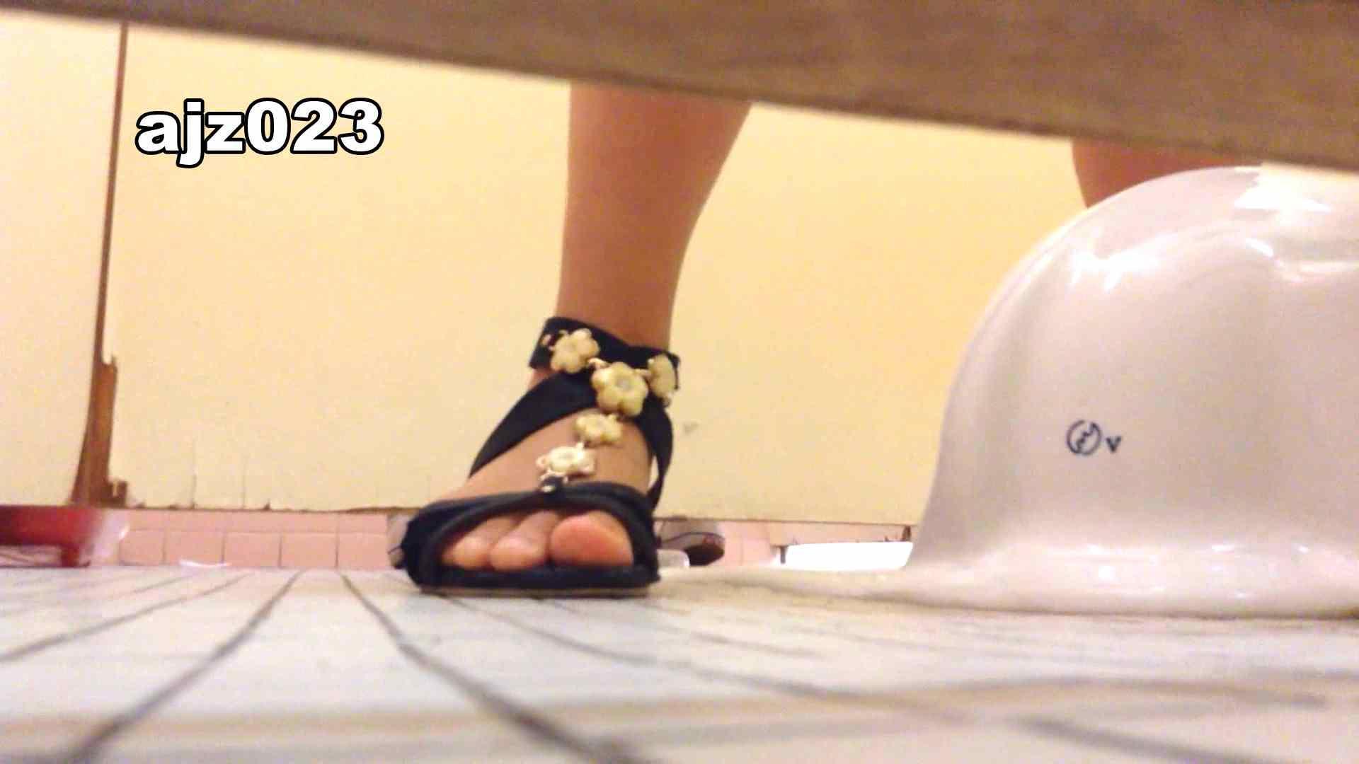 某有名大学女性洗面所 vol.23 洗面所 | HなOL  98pic 54