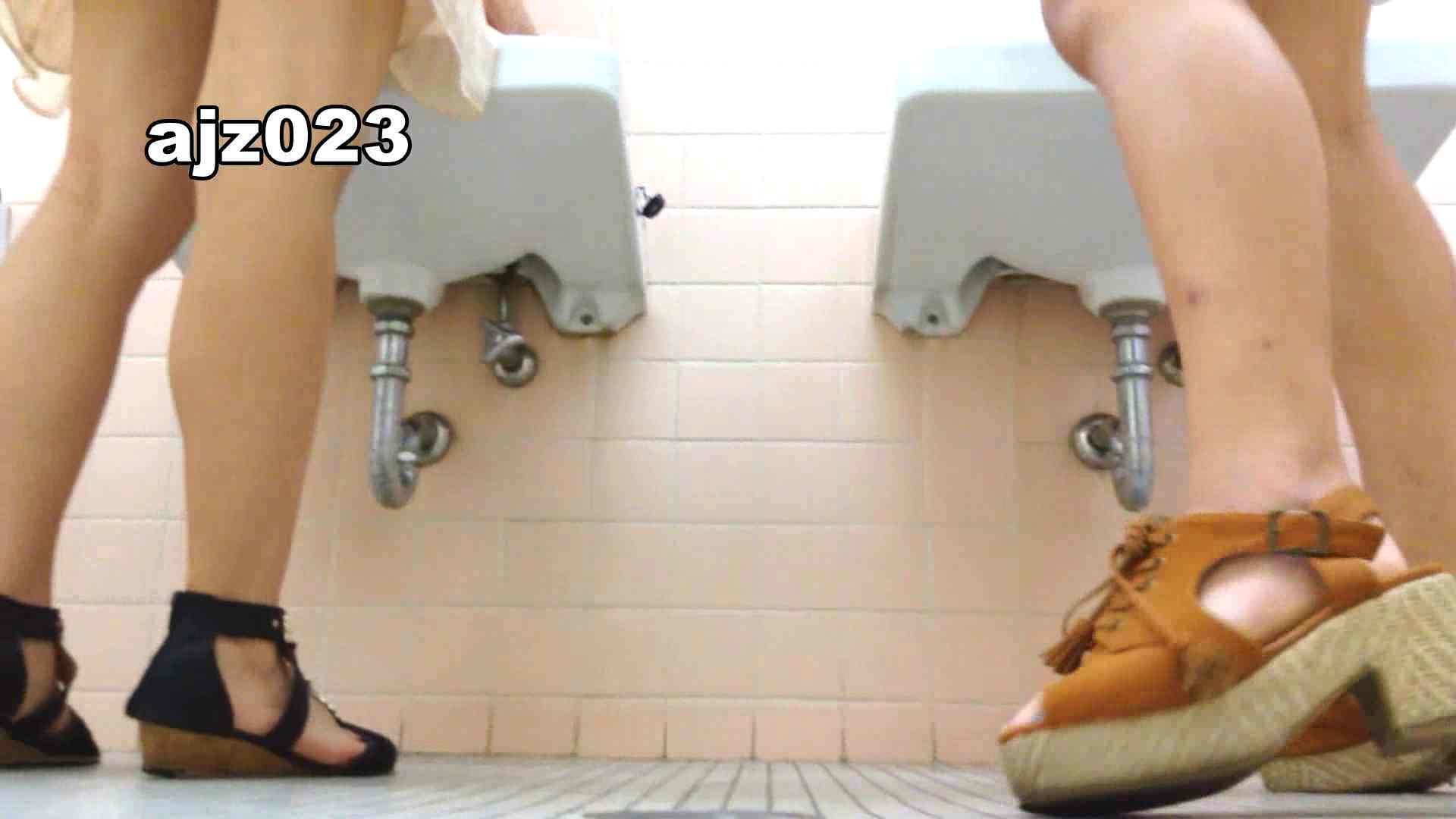 某有名大学女性洗面所 vol.23 洗面所 | HなOL  98pic 55