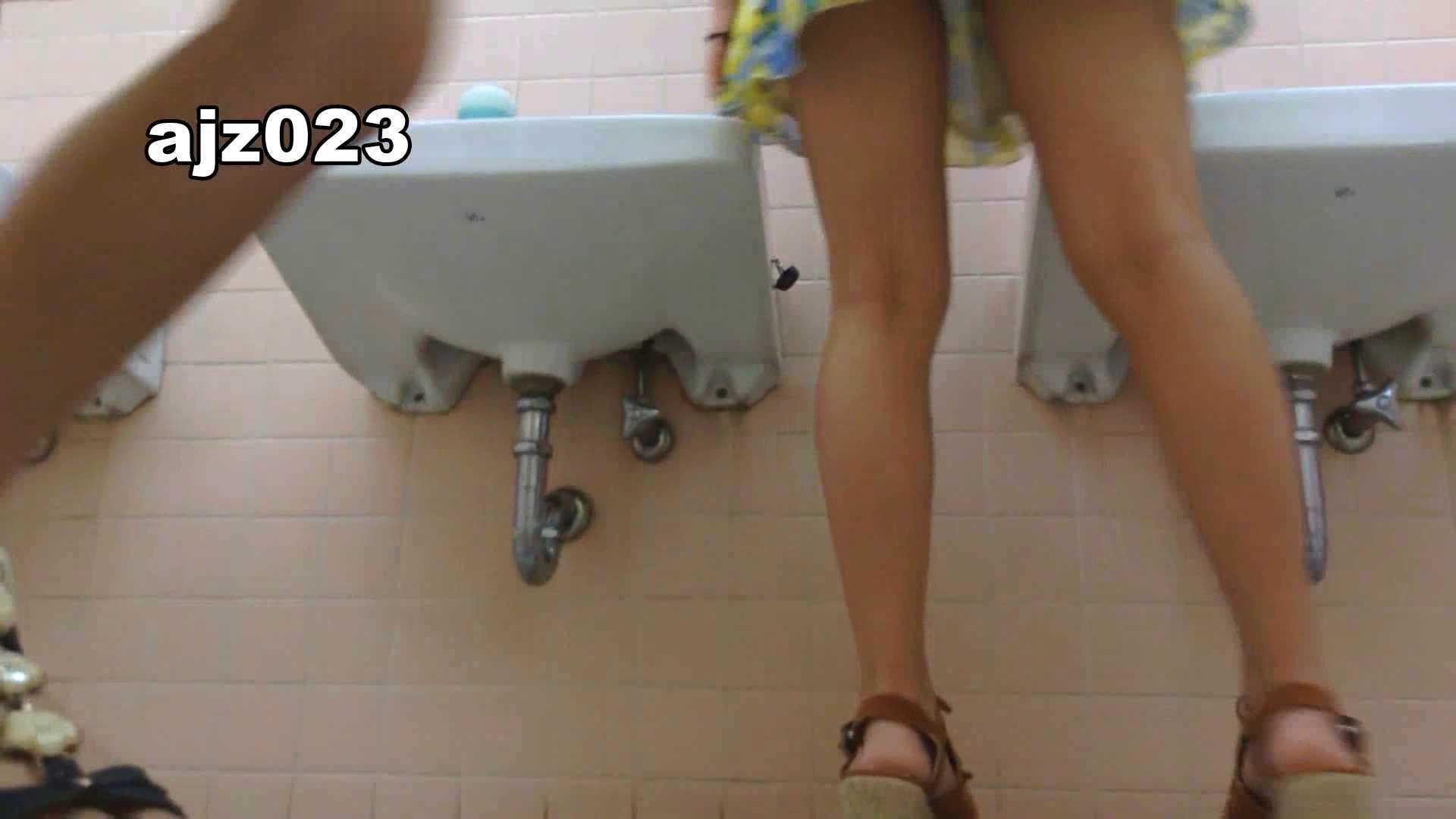 某有名大学女性洗面所 vol.23 洗面所 | HなOL  98pic 57