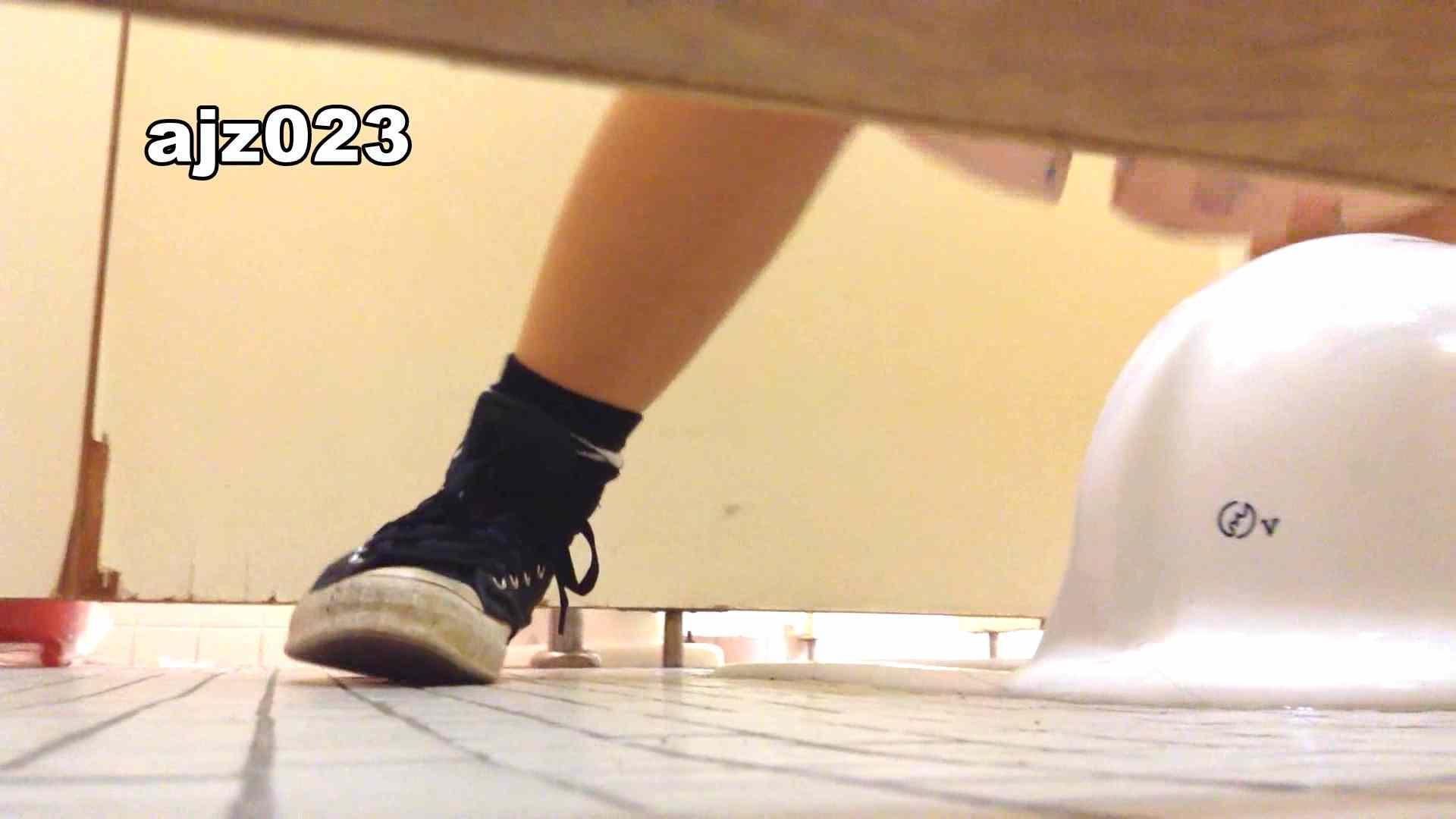 某有名大学女性洗面所 vol.23 洗面所 | HなOL  98pic 59