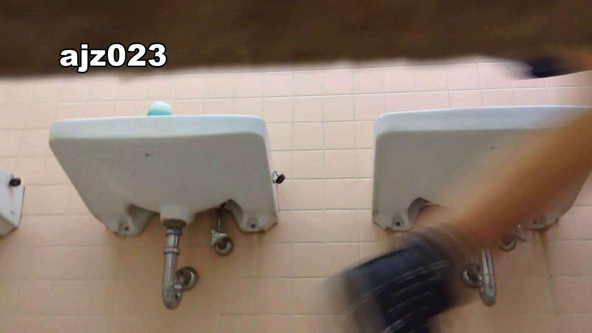 某有名大学女性洗面所 vol.23 洗面所 | HなOL  98pic 66