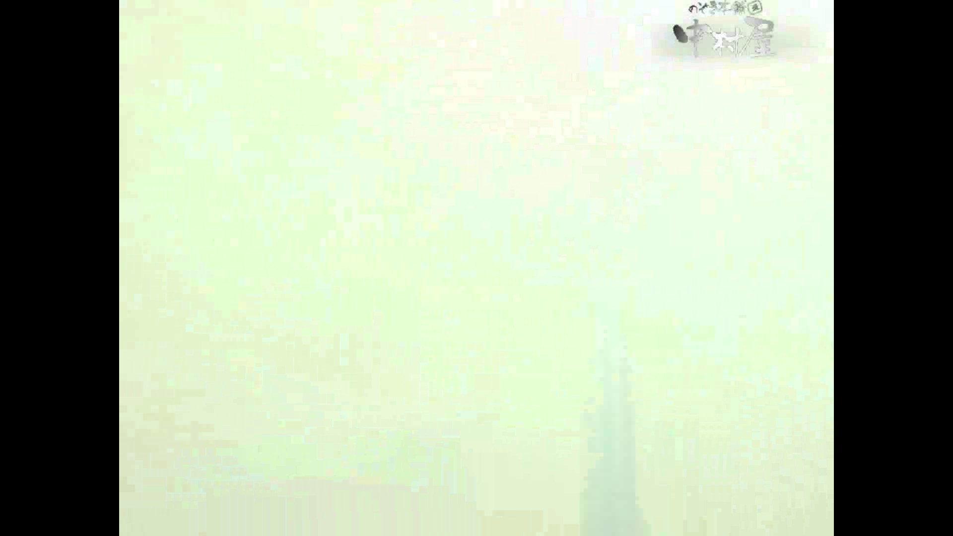 岩手県在住盗撮師盗撮記録vol.34 HなOL | 排泄  93pic 66