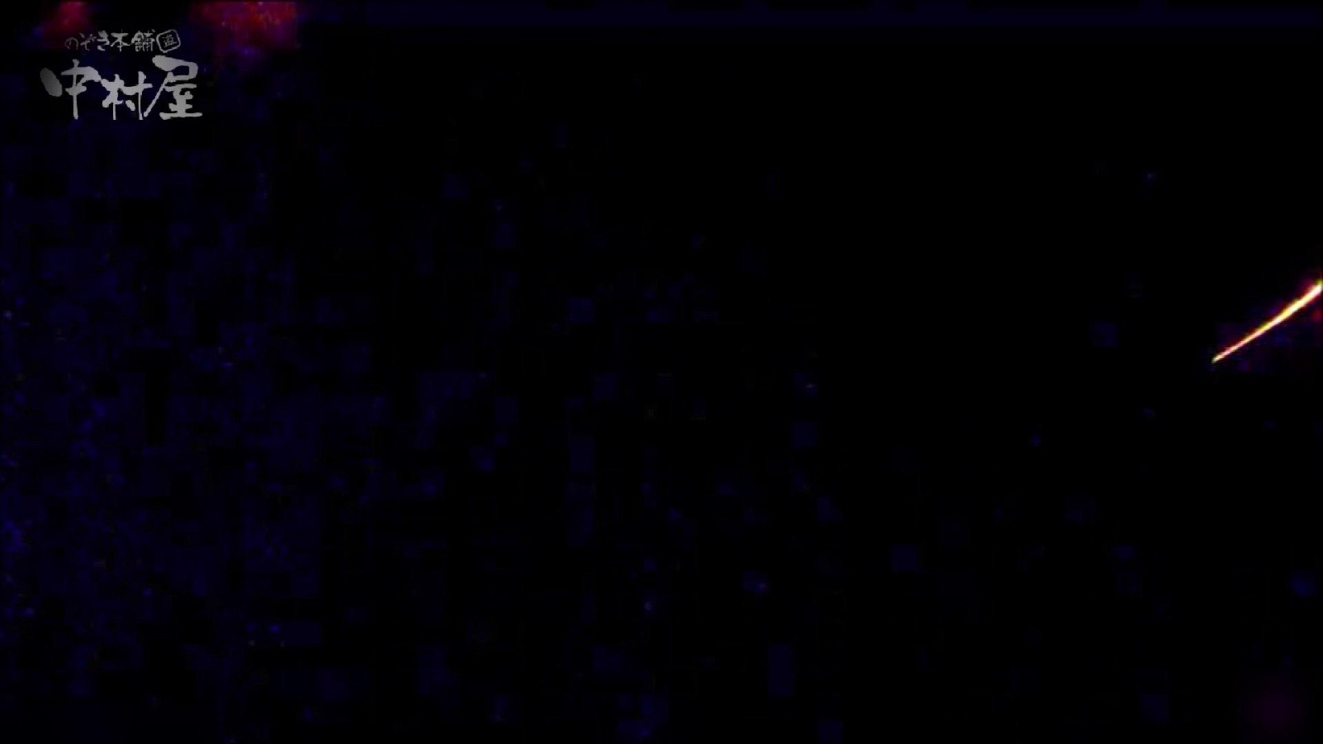 女子トイレ盗撮~某ファミレス編~vol.22 トイレ   潜入シリーズ  71pic 60