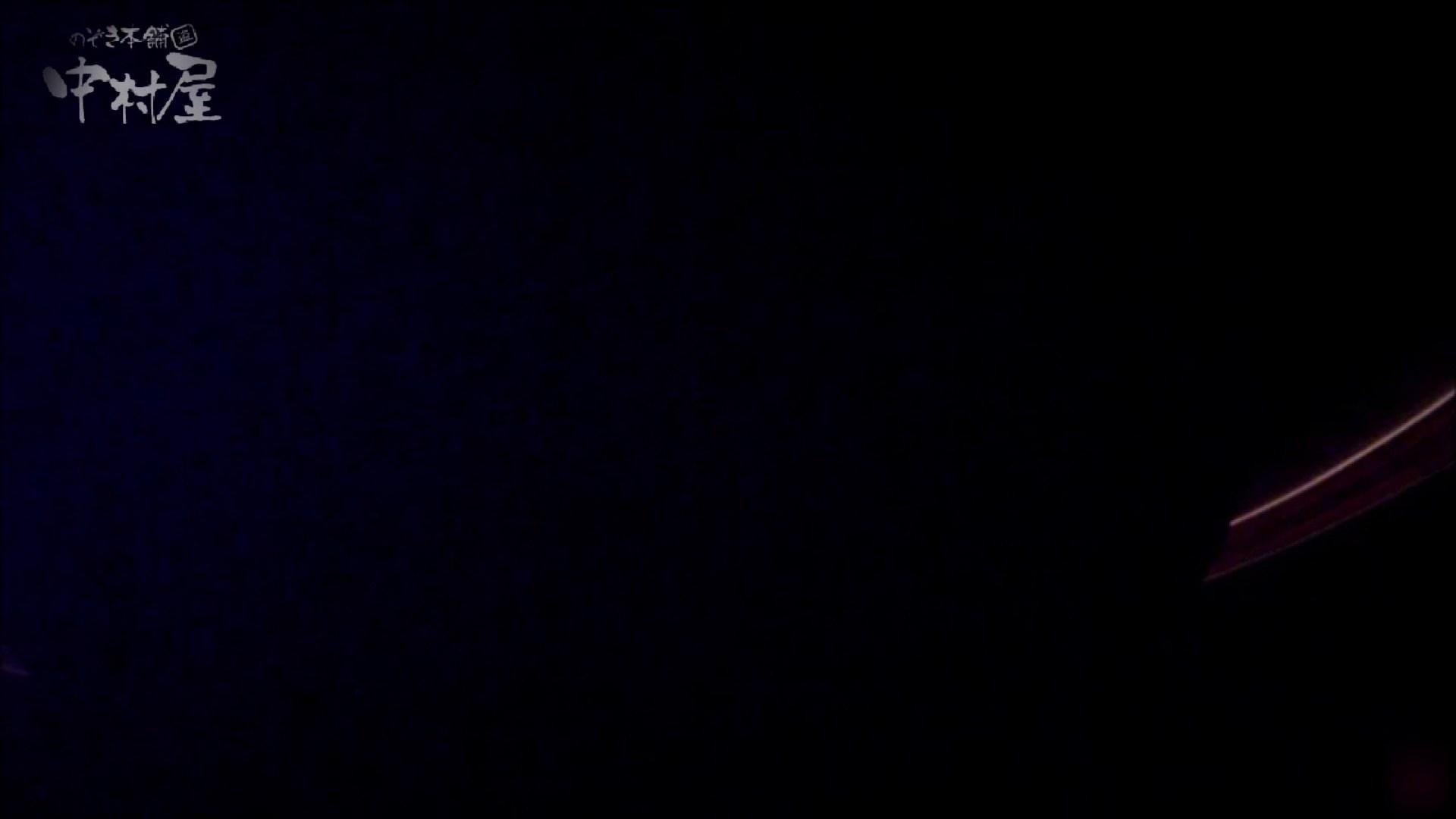 女子トイレ盗撮~某ファミレス編~vol.34 盗撮 | 潜入シリーズ  91pic 47