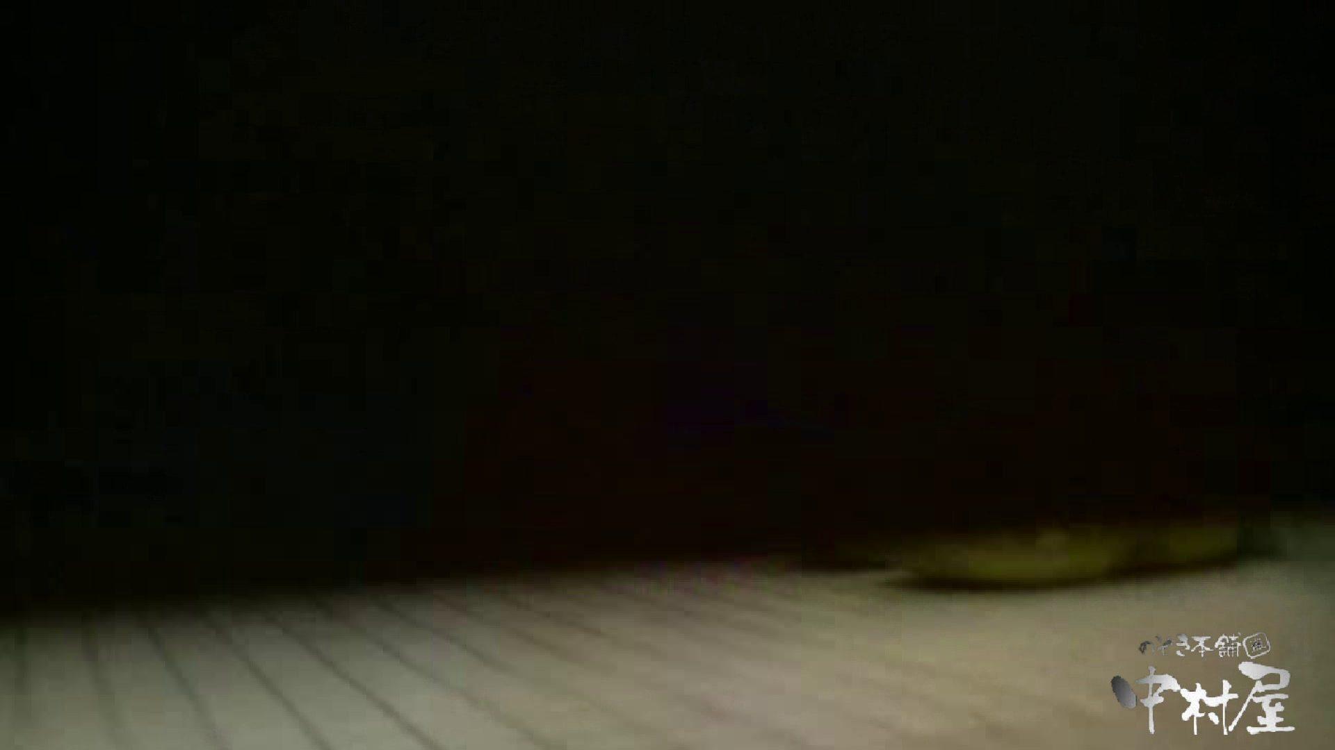 始動します‼雅さんの独断と偏見で集めたVIP限定 動画集Vol.2 期間限定   HなOL  90pic 17