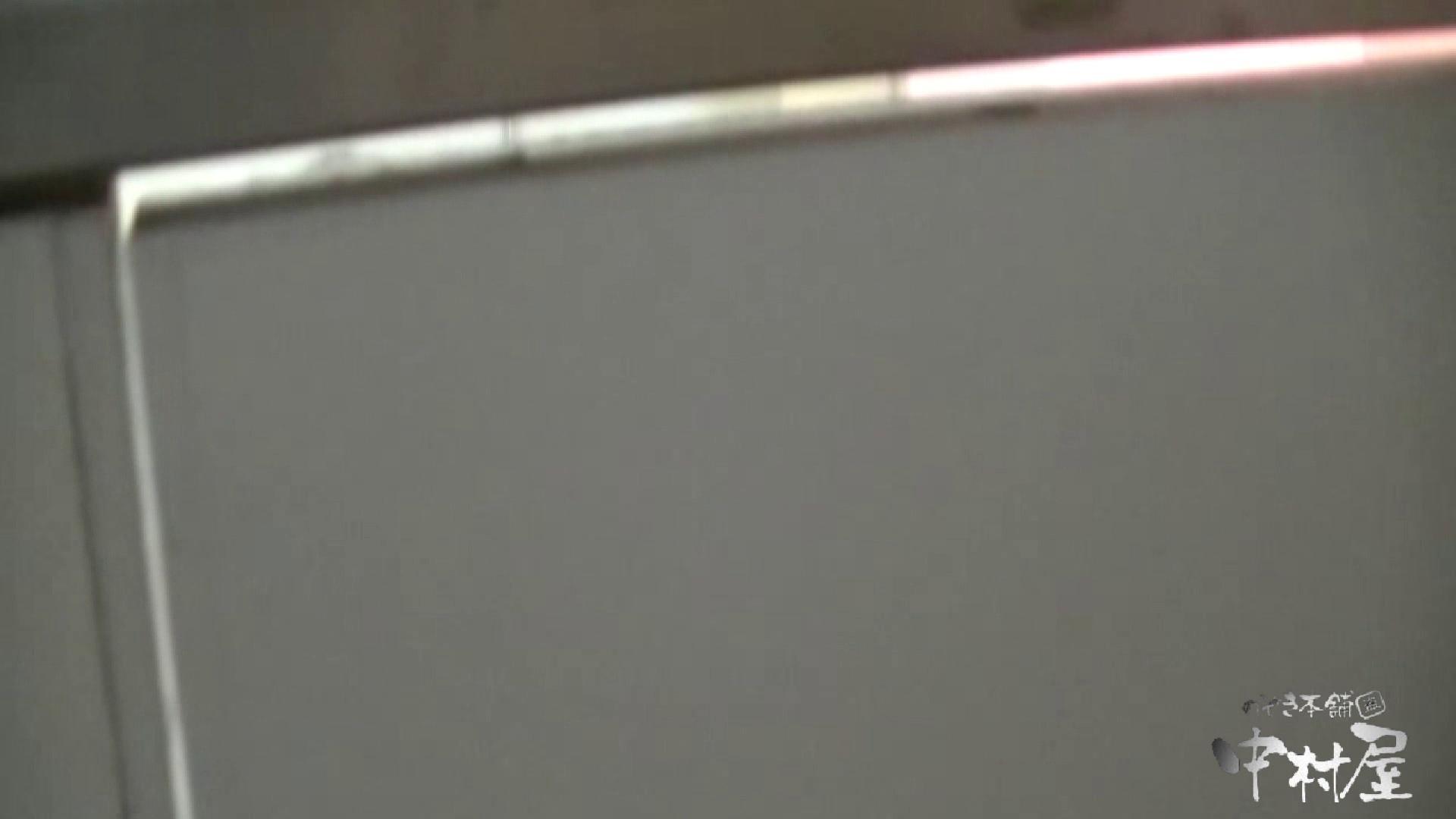 始動します‼雅さんの独断と偏見で集めたVIP限定 動画集Vol.2 期間限定   HなOL  90pic 20