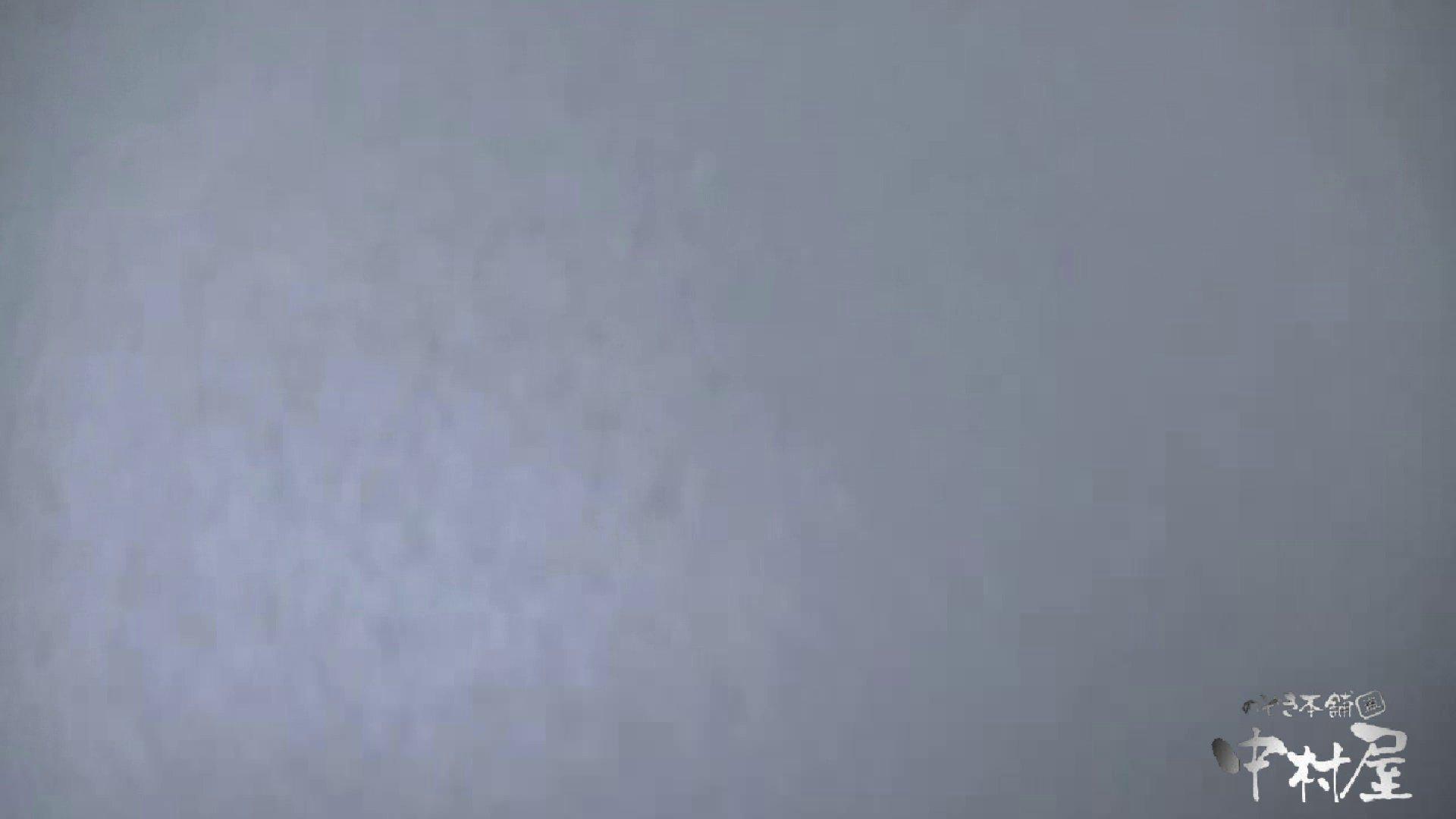 始動します‼雅さんの独断と偏見で集めたVIP限定 動画集Vol.2 期間限定   HなOL  90pic 29