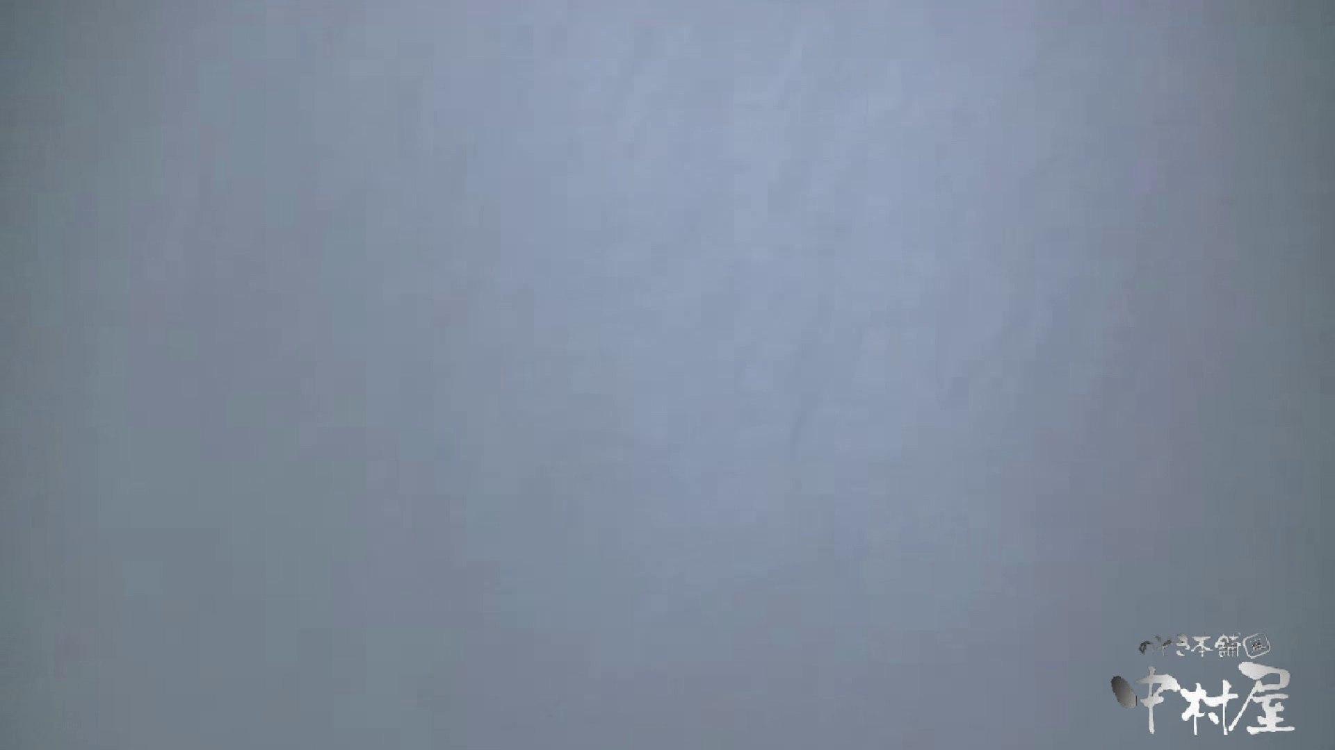 始動します‼雅さんの独断と偏見で集めたVIP限定 動画集Vol.2 期間限定   HなOL  90pic 51