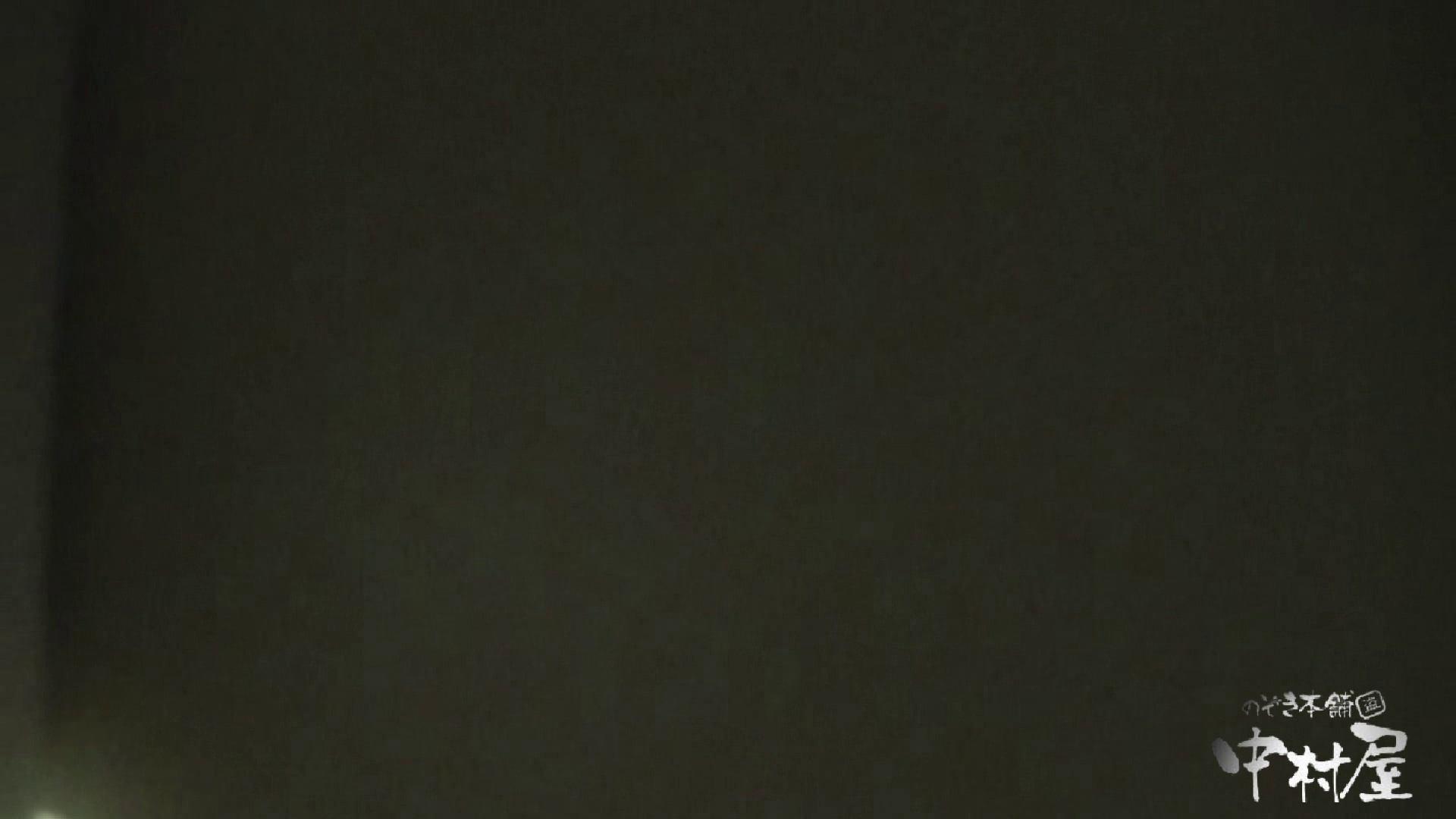 始動します‼雅さんの独断と偏見で集めたVIP限定 動画集Vol.2 期間限定   HなOL  90pic 68