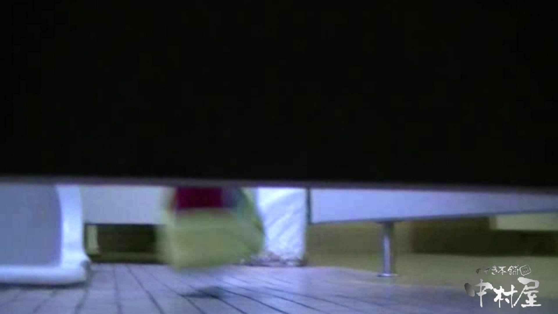 始動します‼雅さんの独断と偏見で集めたVIP限定 動画集Vol.2 期間限定   HなOL  90pic 72