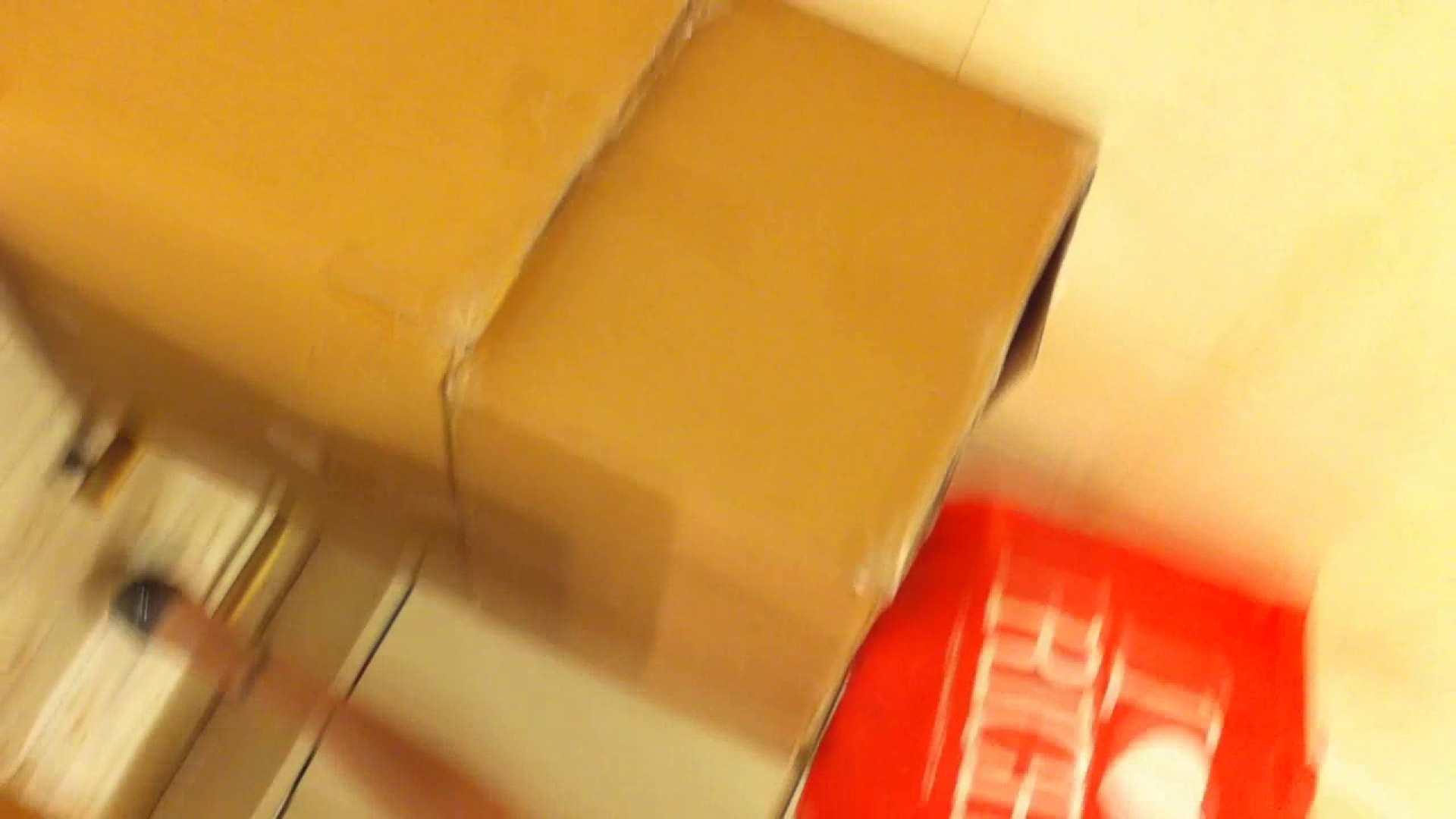 フルHD ショップ店員千人斬り! 大画面ノーカット完全版 vol.12 HなOL   パンチラ  66pic 30
