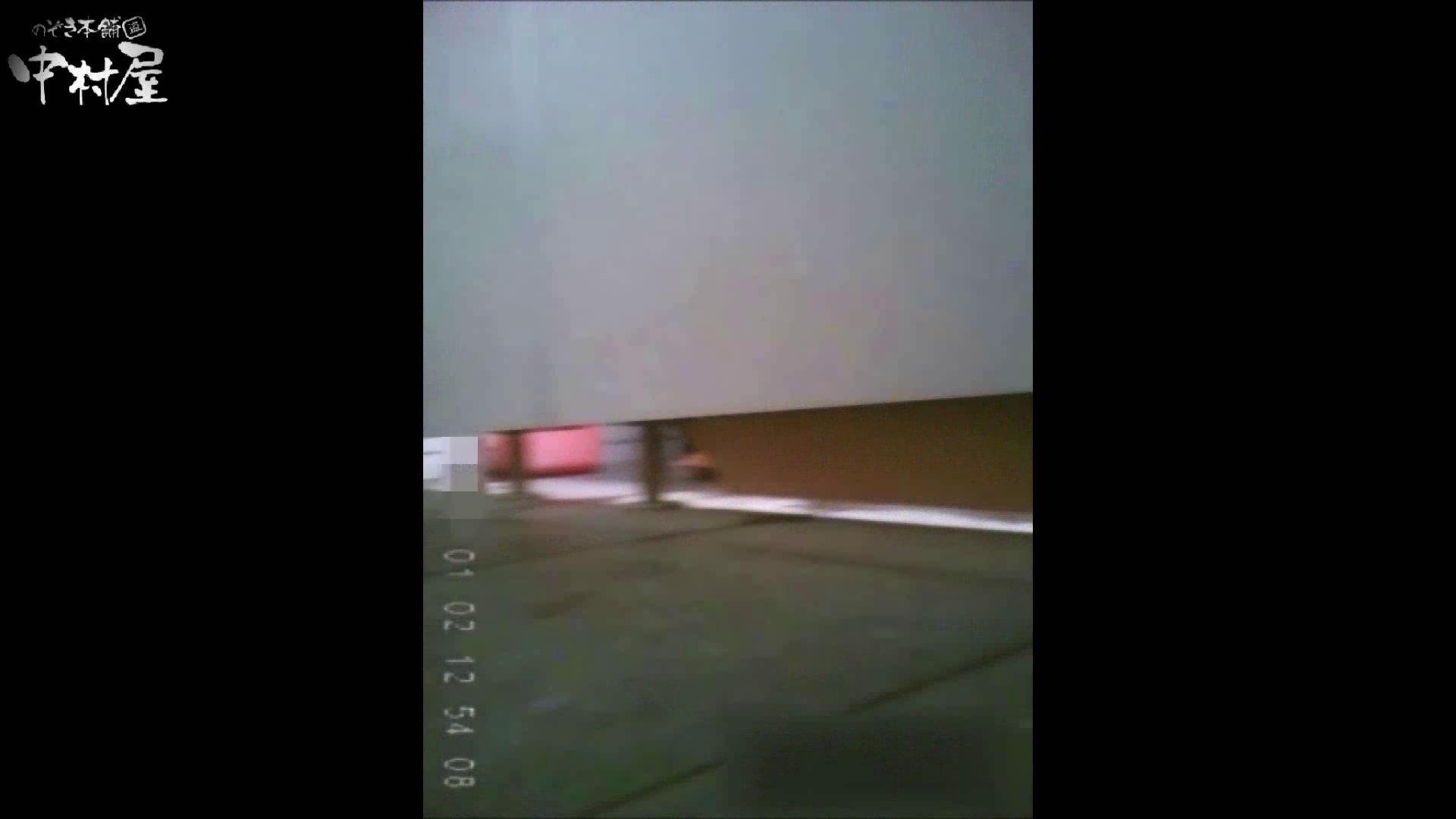 雅さんが厳選新年特別コンテンツ!激走!東京マラソン選手専用女子トイレvol.10 HなOL   女子トイレ  83pic 54