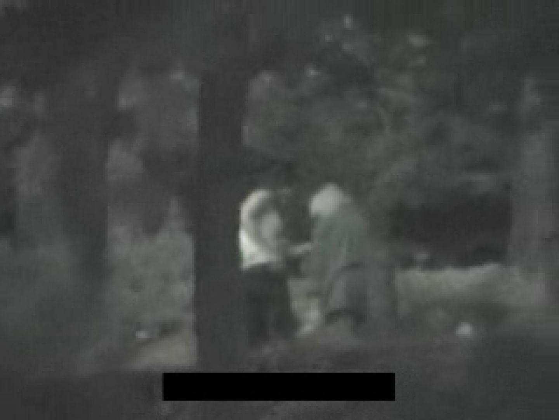 白人さんの野外排せつ盗撮vol.2 HなOL | 野外  90pic 71