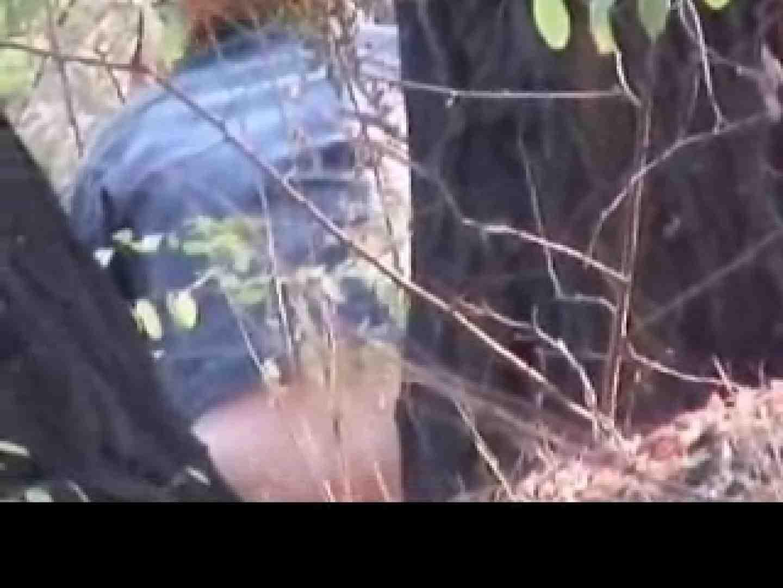 白人さんの野外排泄のぞきvol.3 放尿 | パンティ  49pic 1