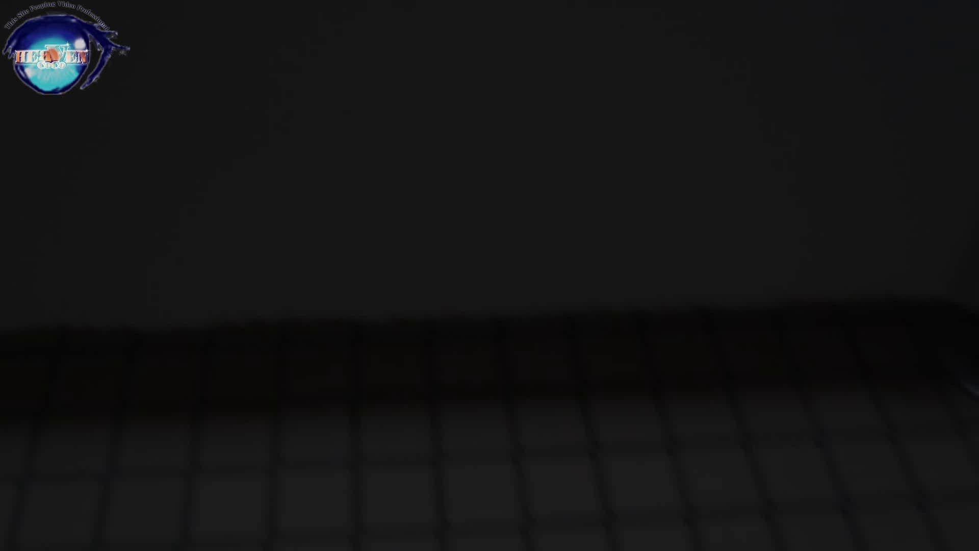 雅さんの独断と偏見で集めた動画集 厠編vol.02 厠 | HなOL  87pic 1