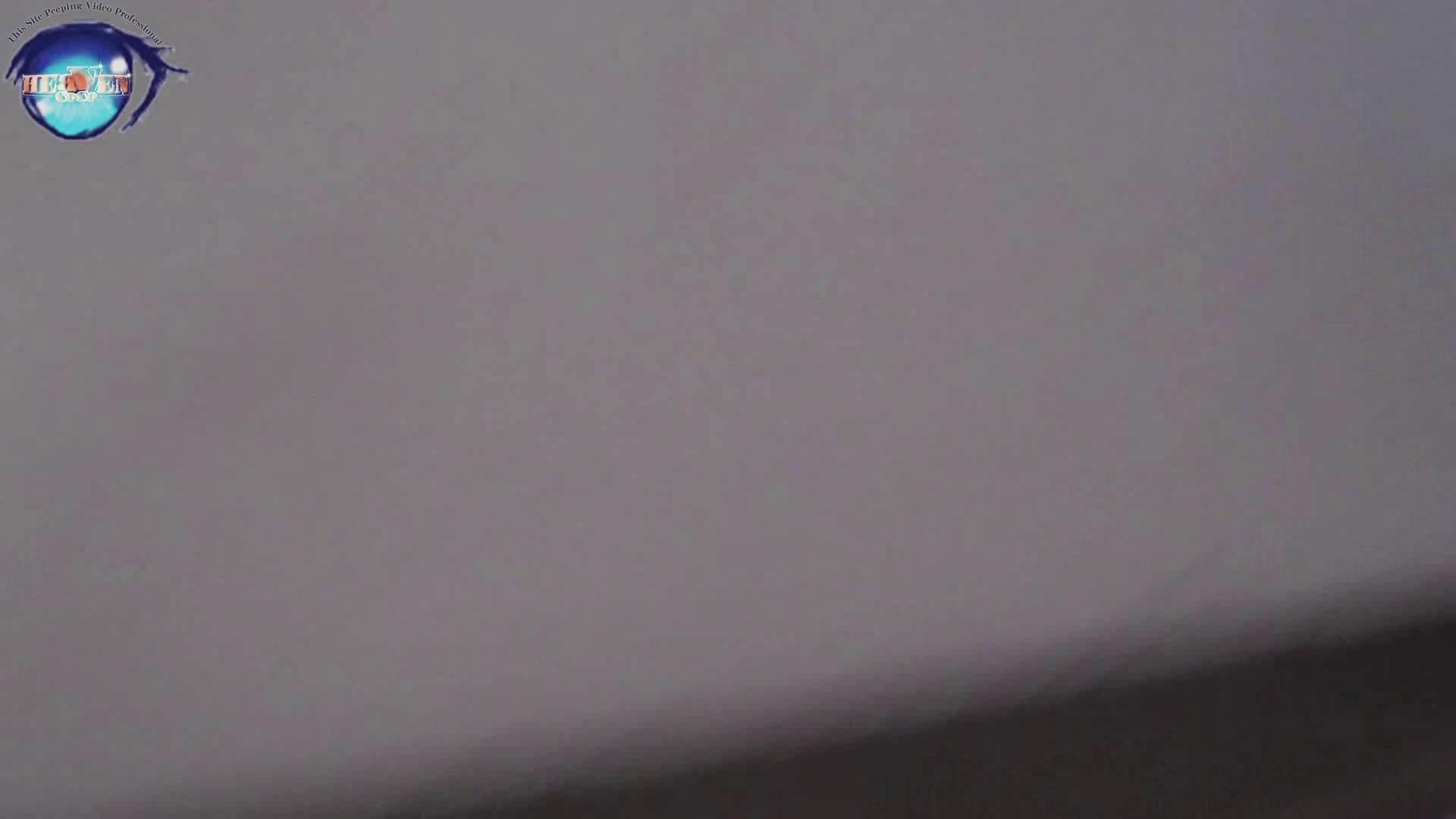 雅さんの独断と偏見で集めた動画集 厠編vol.02 厠 | HなOL  87pic 86