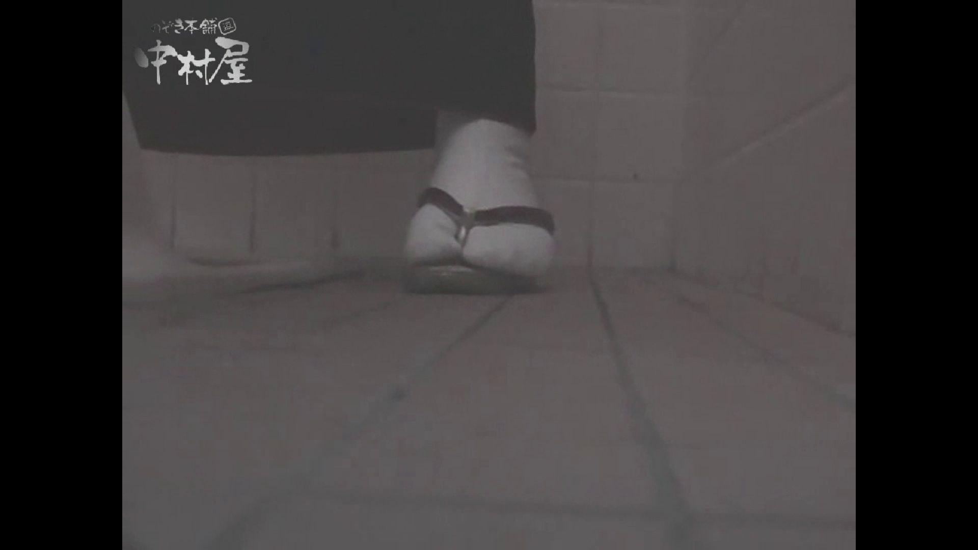 女子トイレ盗撮若い嬢編vol.11 厠   潜入シリーズ  58pic 8