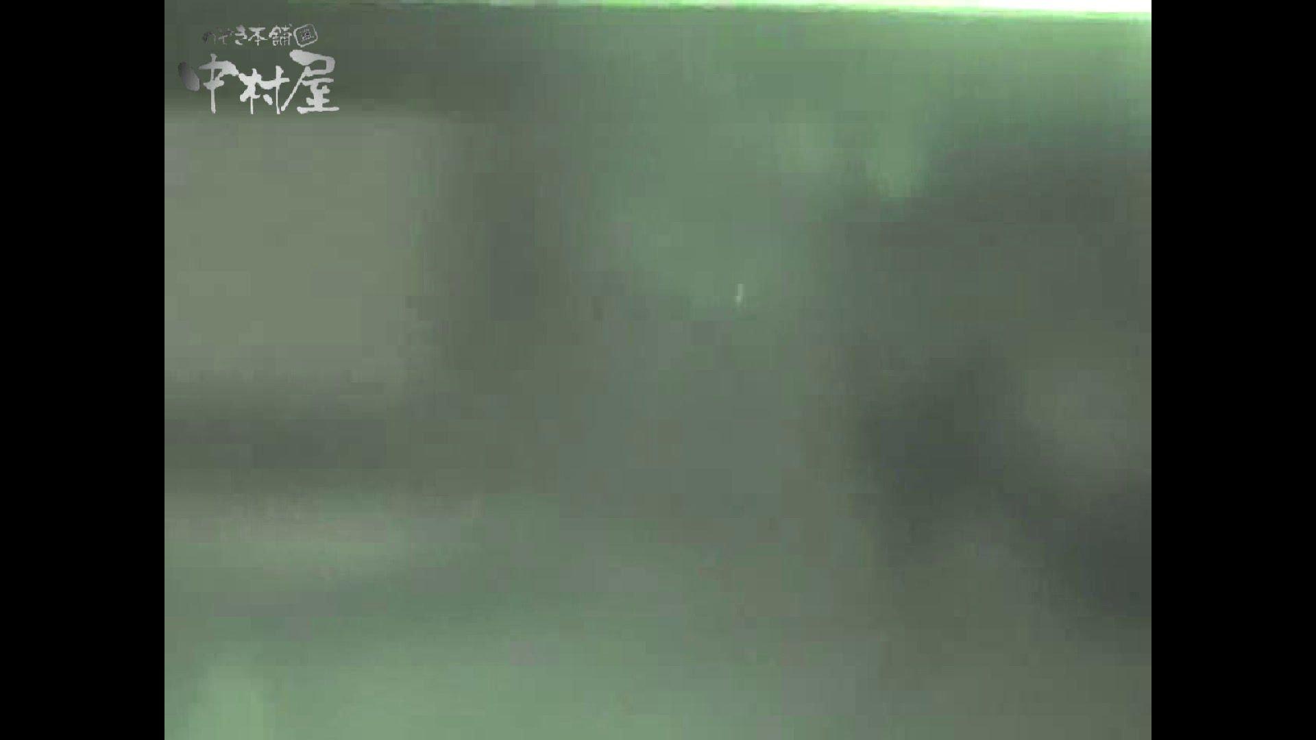 女子トイレ盗撮若い嬢編vol.11 厠   潜入シリーズ  58pic 18