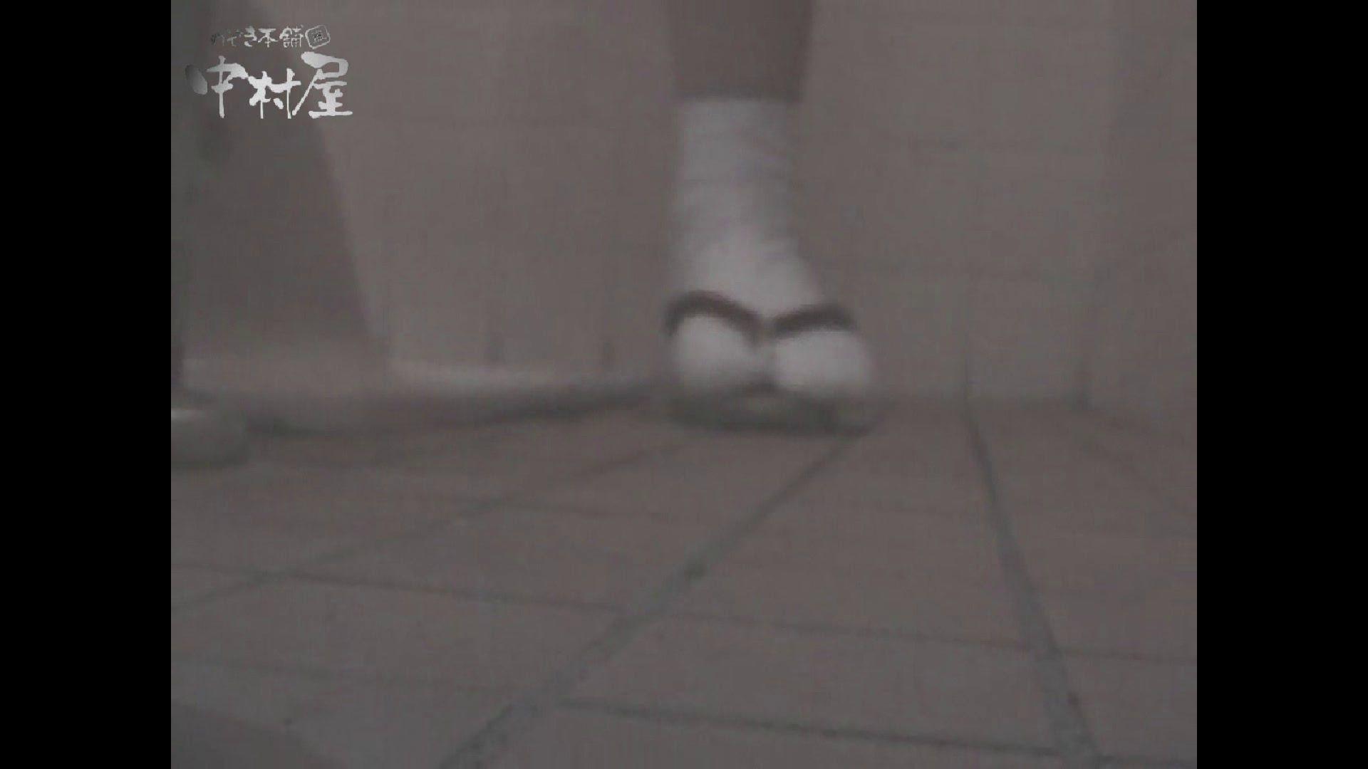 女子トイレ盗撮若い嬢編vol.11 厠   潜入シリーズ  58pic 52