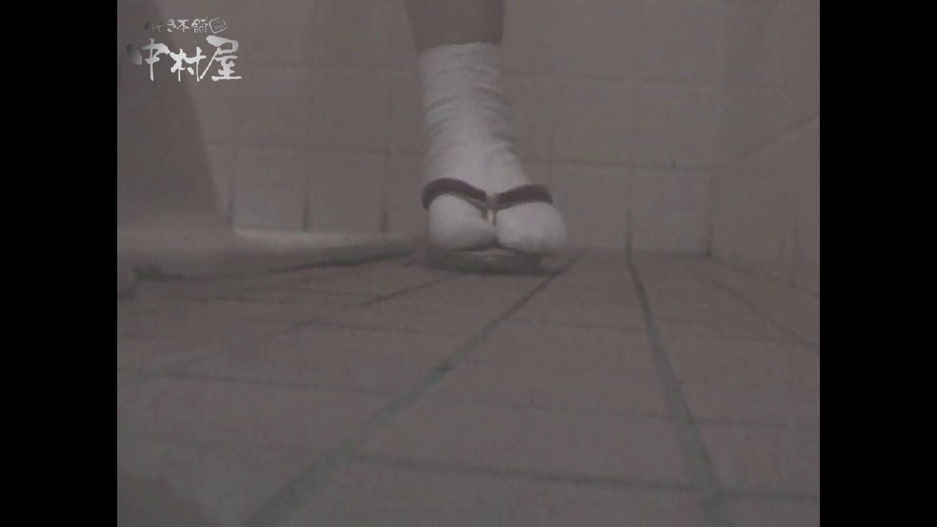 女子トイレ盗撮若い嬢編vol.11 厠   潜入シリーズ  58pic 54