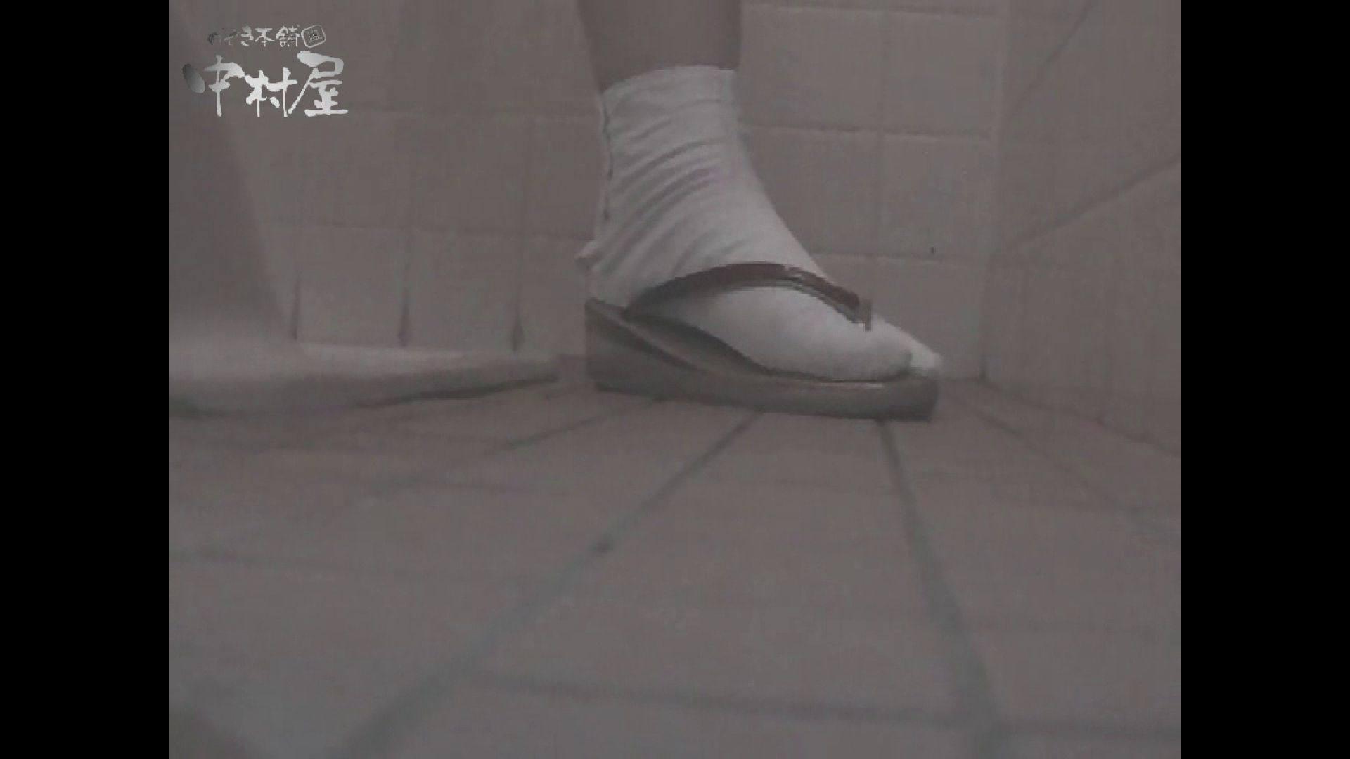 女子トイレ盗撮若い嬢編vol.11 厠   潜入シリーズ  58pic 57