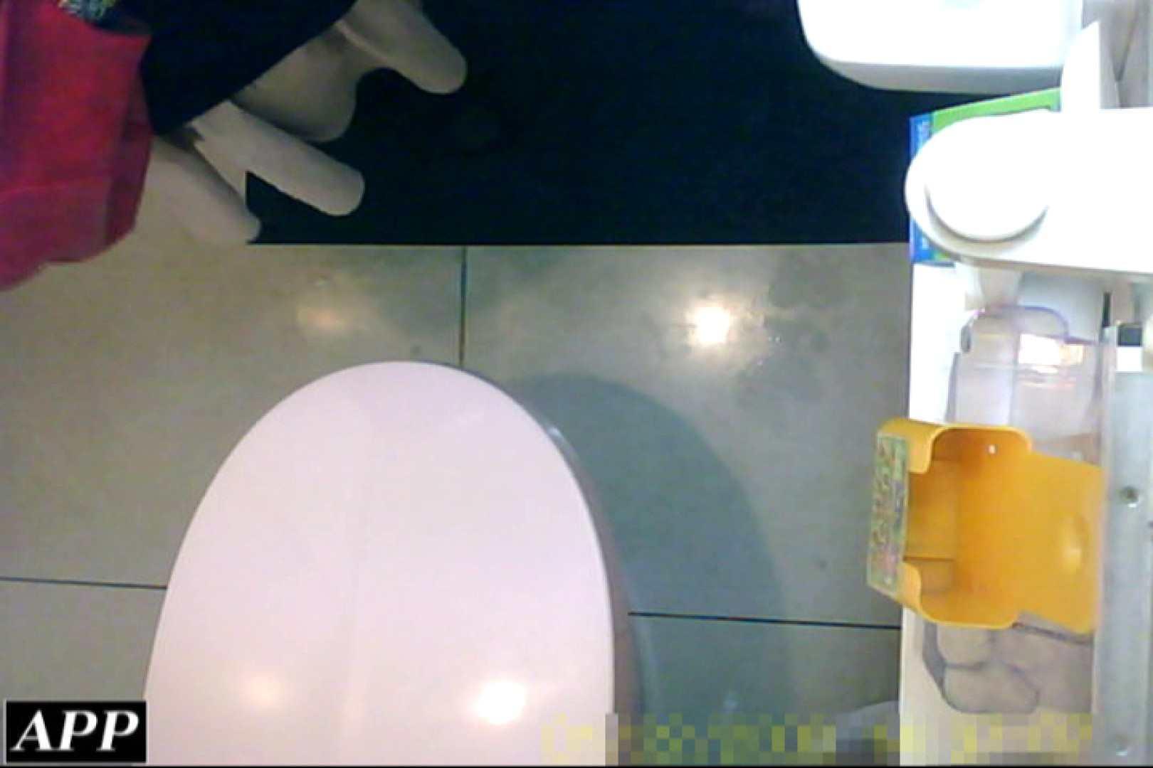 おまんこ:3視点洗面所 vol.055:ピープフォックス(盗撮狐)
