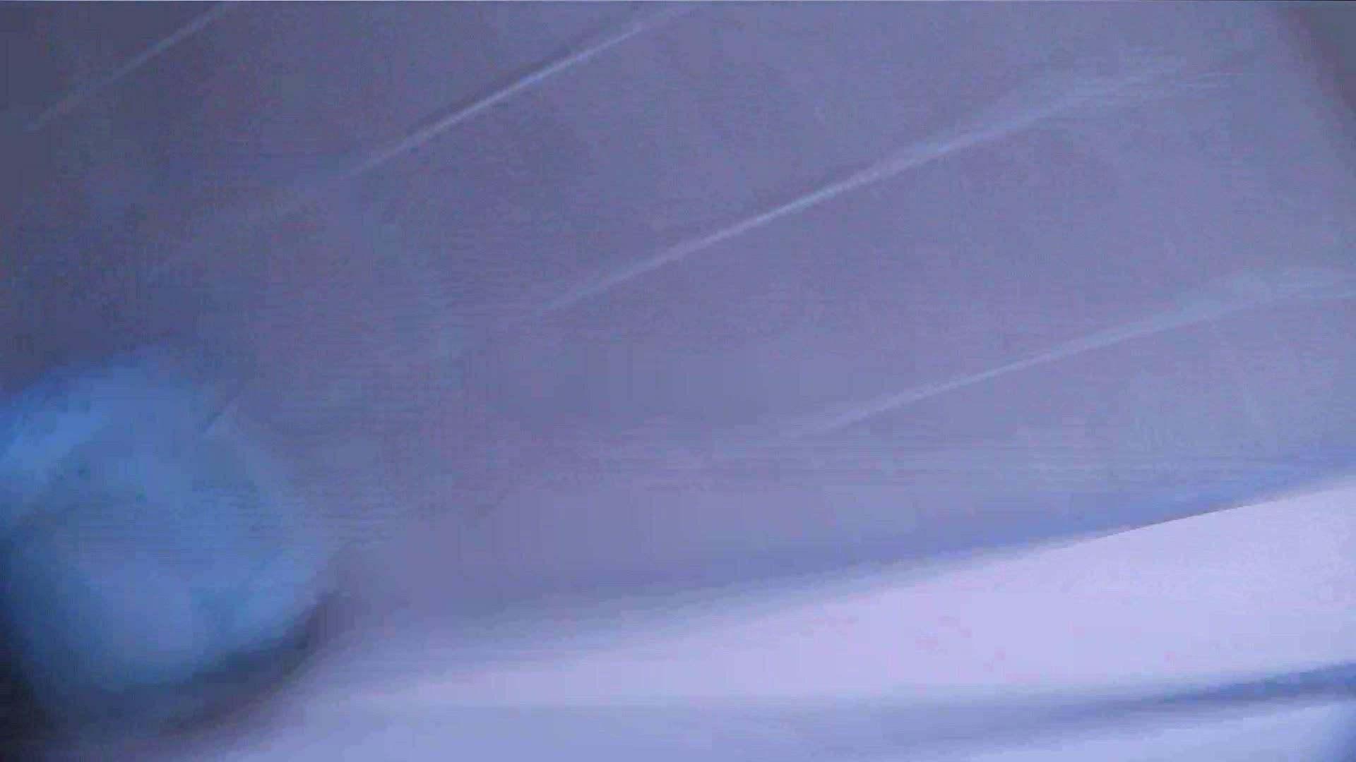 おまんこ:vol.03 命がけ潜伏洗面所! 薄毛がたまりません。:ピープフォックス(盗撮狐)