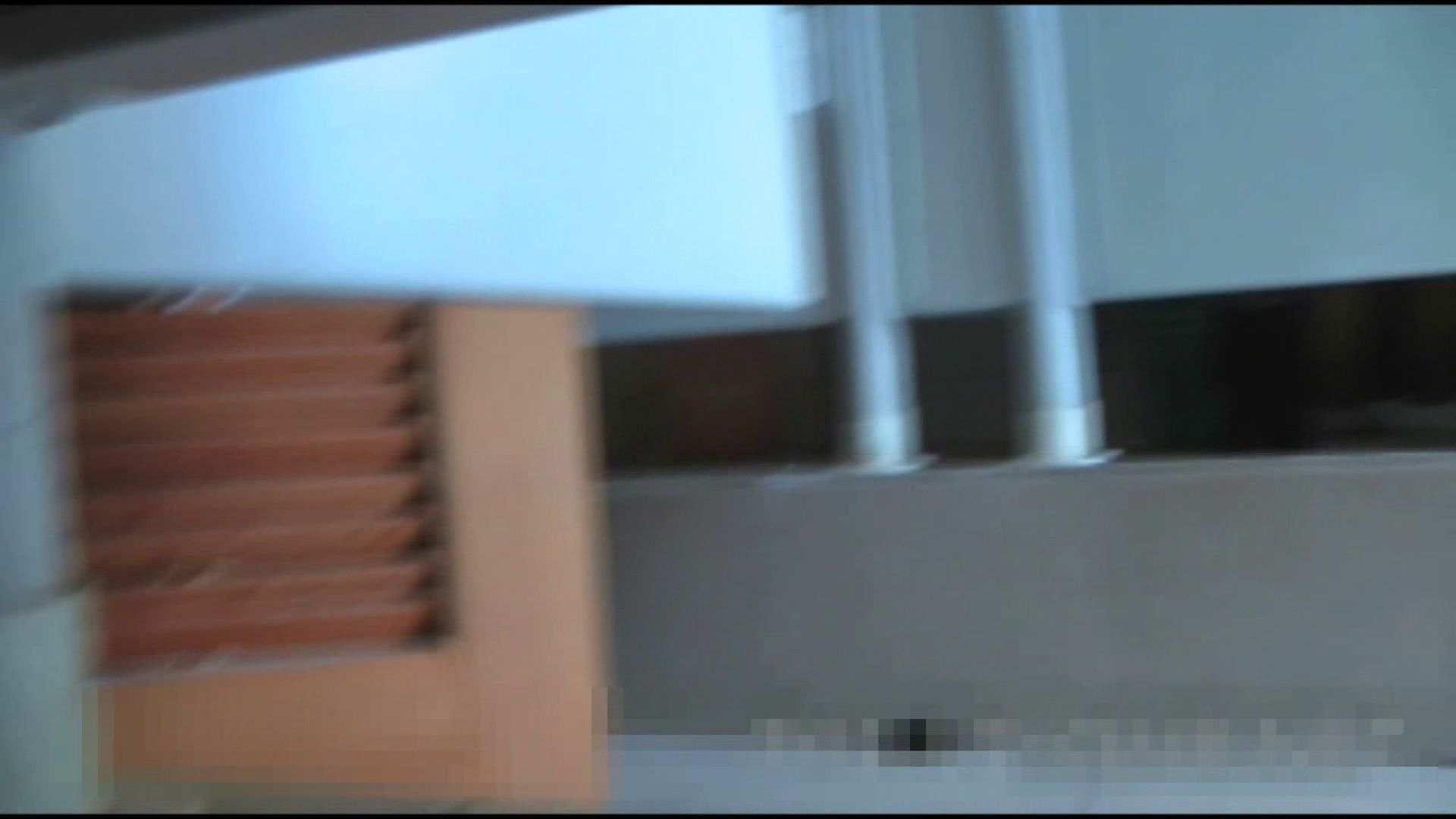 おまんこ:洗面所で暗躍する撮師たちの潜入記Vol.15:ピープフォックス(盗撮狐)